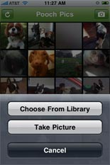 Dog Friendly iPhone App 5