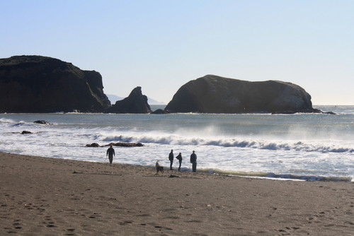 Rodeo Beach Dogs