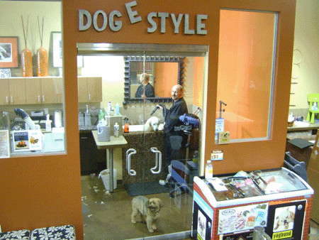 Dog e Style Salon