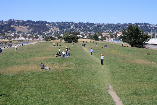 Grassy Play Area at Point Isabel