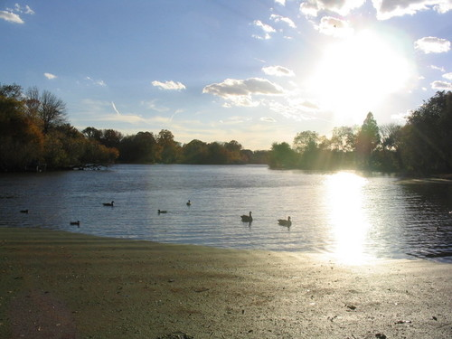 Prospect Park Lake