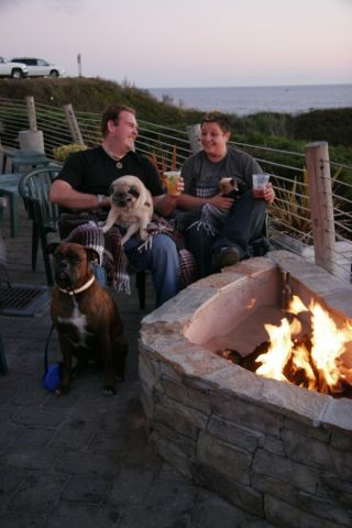 Dogs and drinks by the fire!