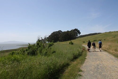The trails at Point Pinole